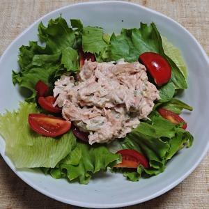 ツナとレタスのサラダ、ヒラマサの刺身