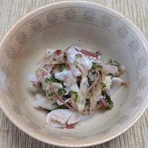 ヤリイカの下足と香味野菜の梅酢おろし和え、タイとヤリイカの刺身