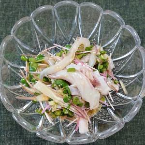 ヤリイカの下足と香味野菜の生姜風味和え