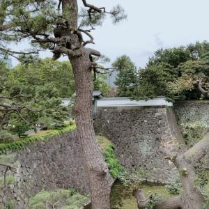 【江戸城天守台に向かって歩いてみた】東京マリサポの休日ジョグ&ウォーク