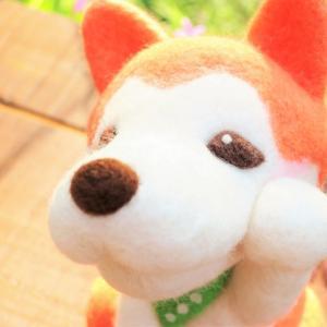 秋田犬もまねきます?(。´・ω・)?