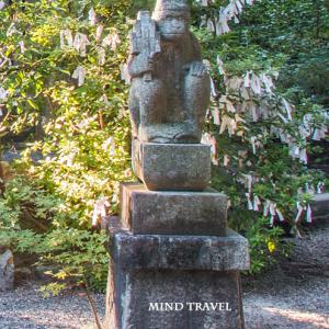 謎の歌人・猿丸太夫の正体とは⑮道鏡と猿丸太夫