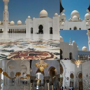 MSCWorldCruise Day103 AbuDhabi