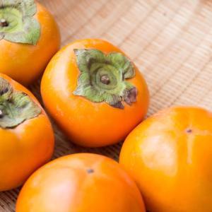 ○●照り輝く秋の日に●○唐木順三『柿におもふ』