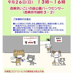 9月26日【譲渡会のお知らせ/いこいの森公園】