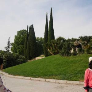 スペイン旅行8日目午前 マドリード市内観光