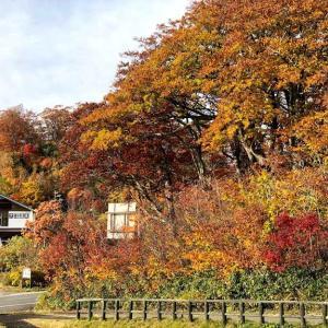 東北紅葉ハイキング旅行 10月21~23日 ②八幡平後半