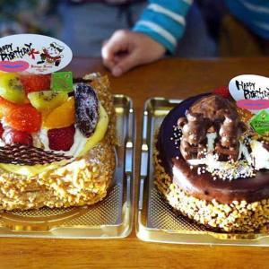 誕生日会と11月の小石川植物園