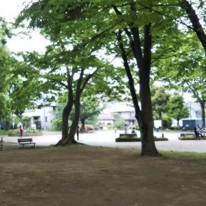公園で仕事をする