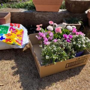 庭いじりの平和な時間。