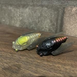 【インプレ】蝉そのまま!メガバス シグレのインプレ