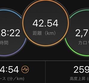 横浜マラソン(2019)完走記