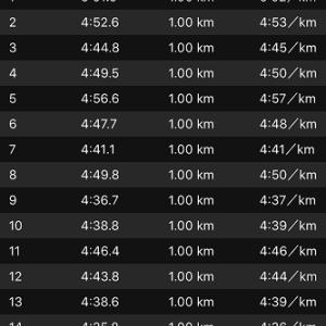 [本日のラン]覚悟の35km走、何故30kmで止めた(+o+)