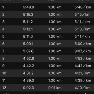 [本日のラン]日曜サンデージョグの11kmが重い重い(+o+)