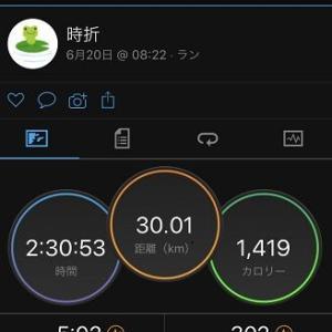 [本日のラン]夏の30km走は自重スタートから気まぐれビルドアップ(=_=)