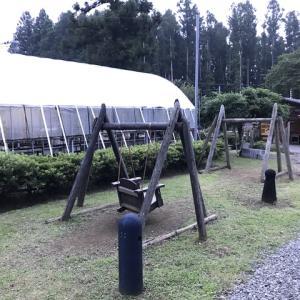 御殿場欅平ファミリーキャンプ場 最終編の薪