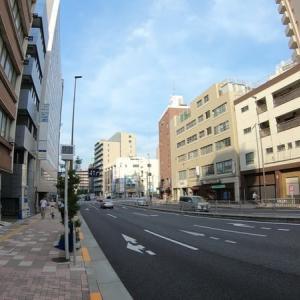 【4K】南北線・三田線 白金高輪駅に潜ってみた Shirokane-takanawa station Namboku Line / Toei Mita line