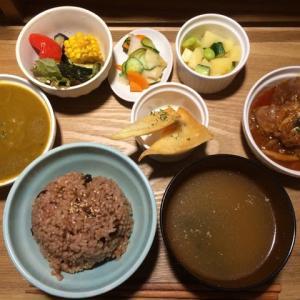30品目シリーズ!② / Japanese fermentation cuisine