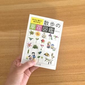 【散歩グッズ】『散歩の草花図鑑』で、雑草・野の花を楽しみながら散歩