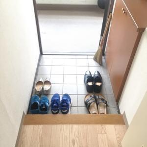 気づいた時に、ぱっと手軽に玄関掃除するために
