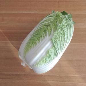 白菜の大量消費。白菜とベーコンのミルク煮(ホットクック)