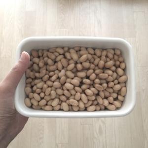 ホットクックで、大豆を蒸す。大豆の水煮より味が濃くて、美味しいです