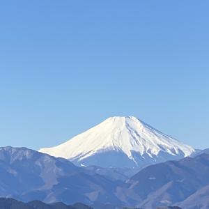 氷の華を探して高尾山へ