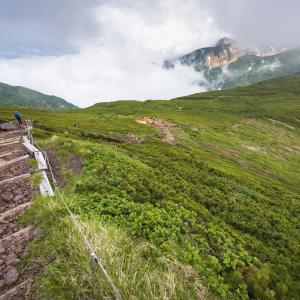 夏の富良野岳を歩く
