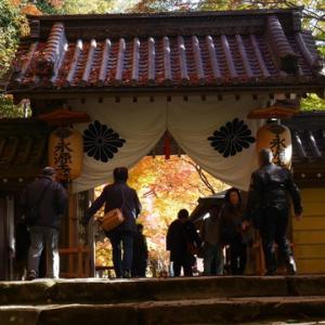 紅葉狩りに永源寺へ