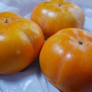 種のない柿