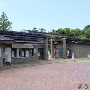 9月の京都植物園訪問<今日の癒されたネタ68>
