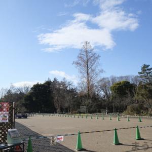 京都府立植物園・散策記<2021年1月号>