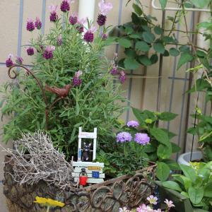 平成最後の小庭