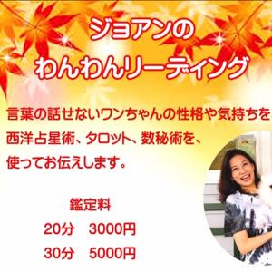 11月25日は わんわんリーディング@横須賀湘南国際村Ven!Kitchen&Dog Garde