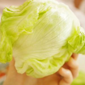 【iHerb優れもの】野菜保存袋でレタスが10日目もシャキシャキ