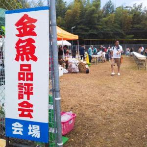 ★福岡観魚会品評会★