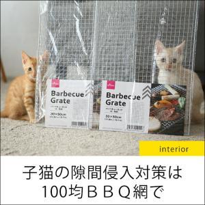 ★子猫対策!ダイソーBBQ網で作るかんたん侵入防止アイテム