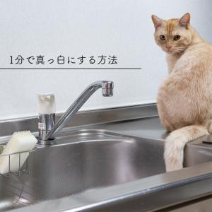 ★マステ貼るだけ!キッチン汚れを防止する簡単な方法