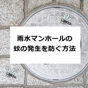 ★【蚊の発生を防ぐ方法】雨水のフタを工夫してみた (閲覧注意)