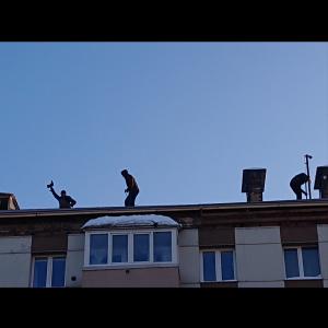 屋根の上のひと
