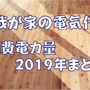 【我が家の電気代】2019年の消費電力量まとめ~最終編~。