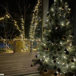 今年もきました!我が家のクリスマスツリー&イルミネーション2020。