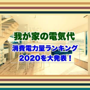 【我が家の電気代】消費電力量ランキング2020を大発表!