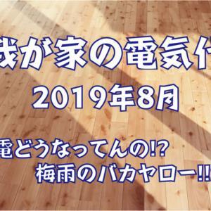 【我が家の電気代】2019年8月 ~売電どうなってんの!? 梅雨のバカヤロー!!SP~