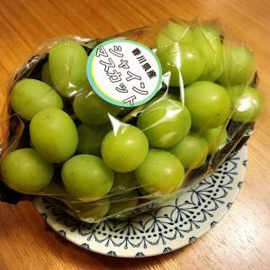 同級生が始めたブドウ栽培の26farm。初めてシャインマスカットを買ってみた。