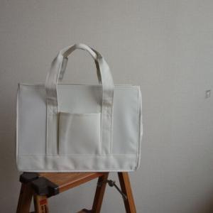 【DCM】 一目惚れした整理バッグ
