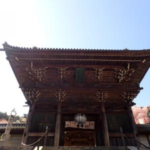 奈良・長谷寺(西国三十三所第8番札所)~神社仏閣めぐり(*^。^*)
