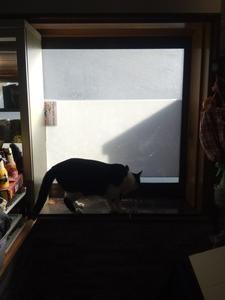 DIYで出窓に棚を作る!
