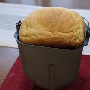 パン始めました!