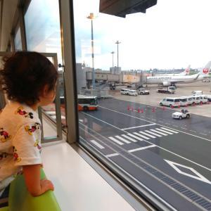 1歳8ヶ月児との国際線旅